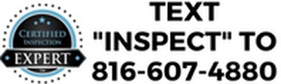 agent inspect logo